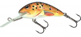 Salmo Hornet Trout Sink 2.5cm