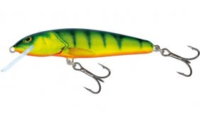Salmo Minnow Hot Perch Fl 7cm