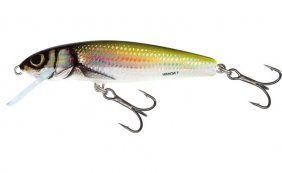 Salmo Minnow Holo Bleak Sink 7cm