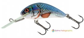 Salmo Hornet Red Tail Shiner Sink 6cm