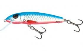 Salmo Minnow Dace Blue Sink 7cm