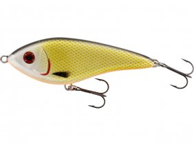 Westin Jerk Swim Glidebait 10cm 31g Low Floating Official Roach